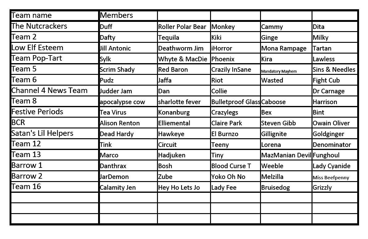 The SUR5AL 2013 Teams