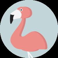 creative-tail-animal-flamingo-svg